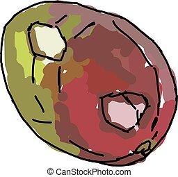 Mango, illustration, vector on white background.