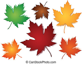 Transparent maple leaves on wavy seasonal fall or autumn colors wavy background.