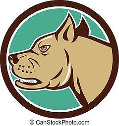 Mastiff Dog Mongrel Head Circle Cartoon
