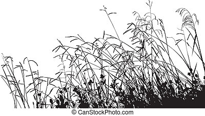 Meadow Grass Silhouette, change the color as you like