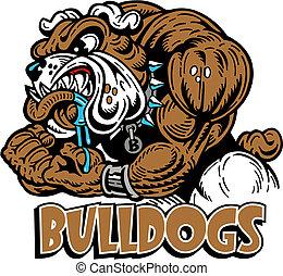 mean muscular bulldog