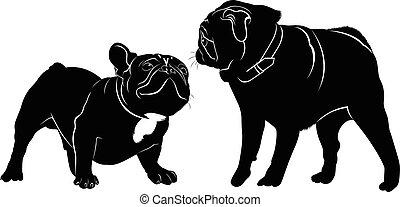 meeting animals dogs french bulldog