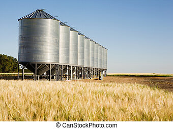 Grain bins in the distance with a wheat field in the foreground. Shallow depth of field is used to bring attention to the grain bins.