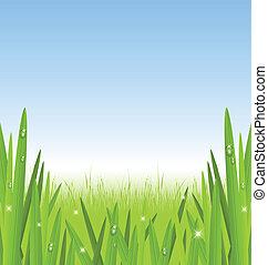 Morning grass with copy space for your custom text