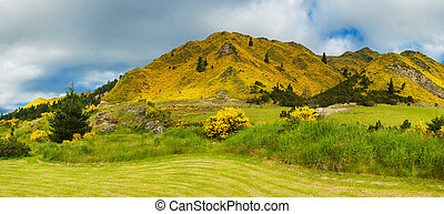 Mountains of New Zealand
