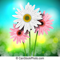 Natural background with gerberas