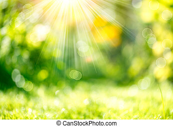 Nature Spring Blurred Background with Sunbeams