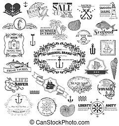 Nautical Sea Calligraphic Elements - for scrapbook and design in vector