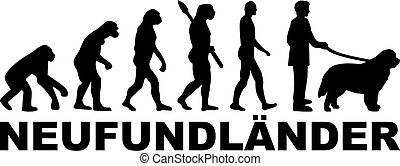 Newfoundland evolution german