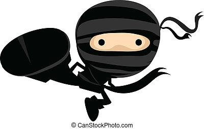 Ninja Kick