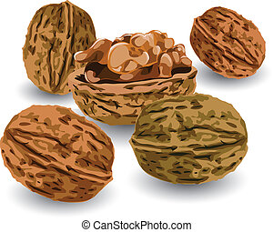 Hill of nuts ripe, crop reaped in autumn, illustration