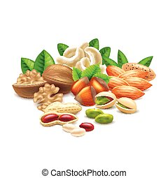Nuts isolated on white photo-realistic vector illustration