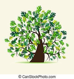 Oak tree, summer