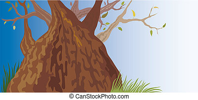 Old Tree (vector)