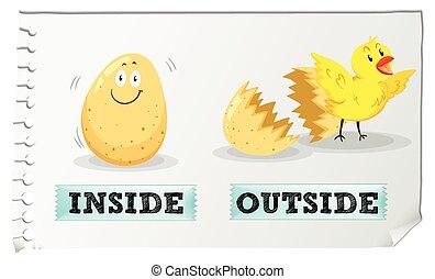 Opposite adjectives inside and outside illustration