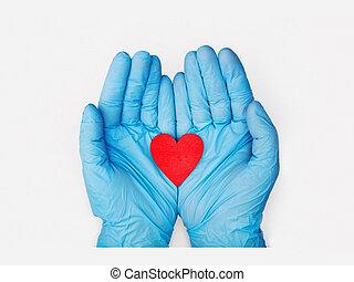 Organ donation or healthy heart concept