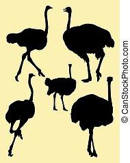 Ostrich birds animal silhouette 03.