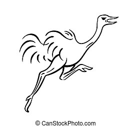 Ostrich running vector illustration sketch of bird outline drawing in black isolated on white