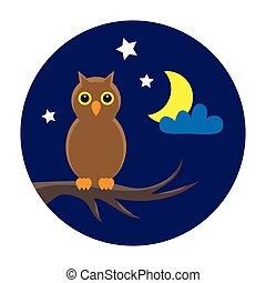 owl night sky
