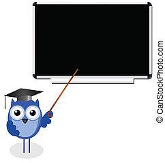 Owl teacher copy space for own text on blackboard