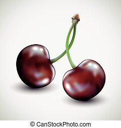 Pair of cherries isolated on white background.