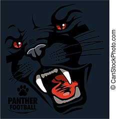 panther football