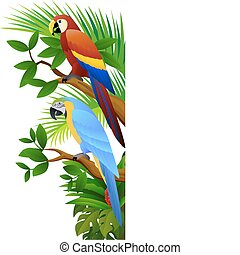 vector illustration of parrot