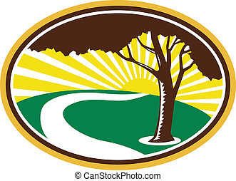 Illustration of a pecan tree silhouette with winding river stream and sunburst in background don ein retro style.