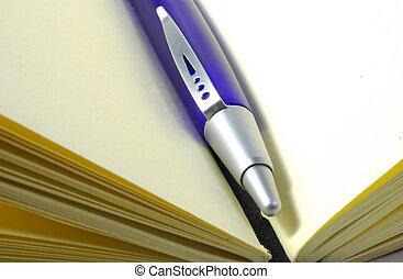Plue Pen in a Journal