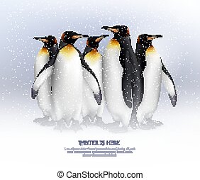 Penguins Realistic Composition