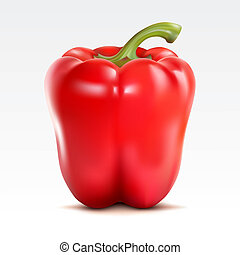 Red pepper on the white background