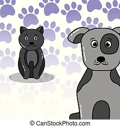 pets dog and cat