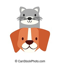 pets dog and cat on white background