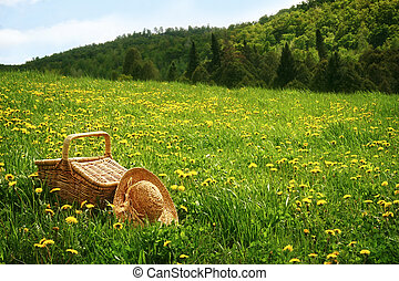 Picnic basket in the grass