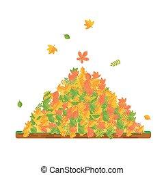 pile of fallen leaves
