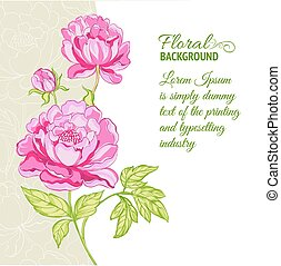 Pink peonies background with sample text. Vector illustration.
