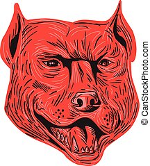 Pitbull Dog Mongrel Head Drawing