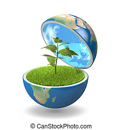 Small plant growing inside opened planet Earth, isolated on white background, concept of ecology, symbol of new life