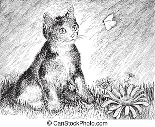 A playful calico kitten chases a butterfly - vector version of my original pen & ink drawing.
