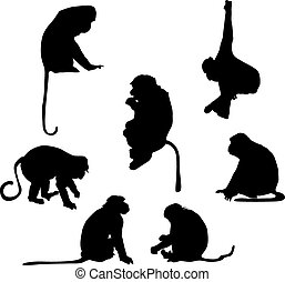 Playful monkey silhouettes over white background
