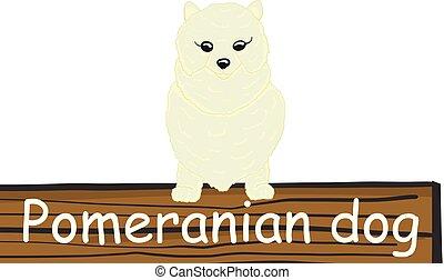Pomeranian cartoon dog icon
