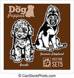 Poodle and German Shepherd - Dog Puppies. Vector set. Funny dogs puppy pet characters different breads doggy illustration isolated on dark.