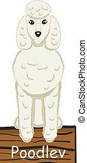 Poodlev cartoon dog icon