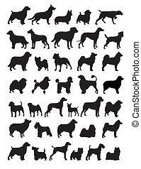 Popular dog breeds silhouette illustrations