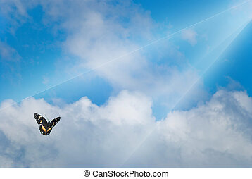 Rays of light shining down on clouds with a butterfly
