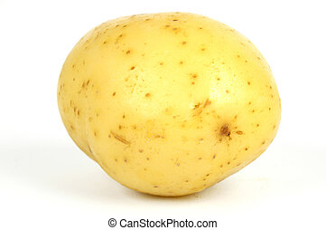 one potato isolate on a white background