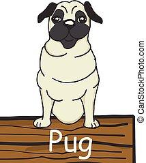 Pug cartoon dog icon