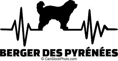 Pyrenees Shepherd frequency silhouette german