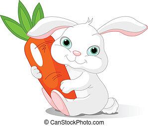 Small lovely rabbit holds giant carrot