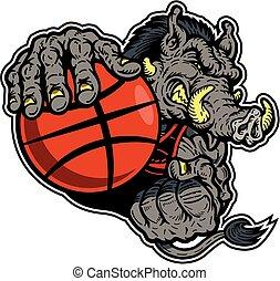 razorback basketball player